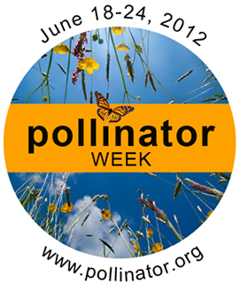 National Pollinator Week at Tryon Farm Institute