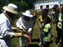 Colin and Suzanne demonstrating beekeeping.