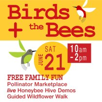 2014_birds-bees-SQUARE