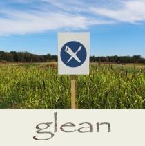 TFI-Glean