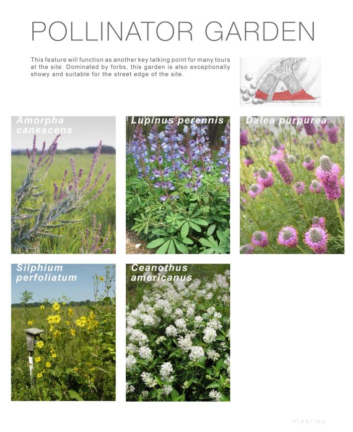 Trail Hub Landscape Design Proposal Tryon Farm Institute